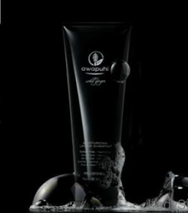 Paul Mitchell Awapuhi Ginger MOISTURIZING LATHER szampon 250ml